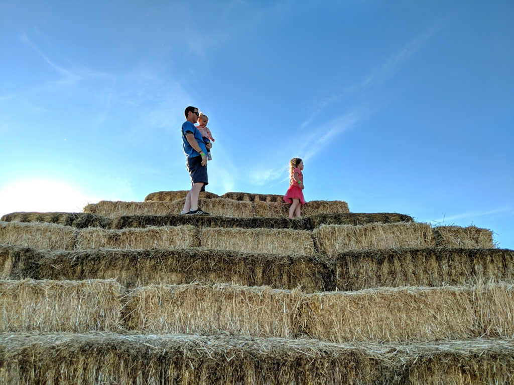 A father, holding a small toddler girl, and an older, small girl standing atop a pyramid made of hay